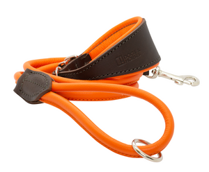 D&H Padded Leather Hound Collar with Matching Rolled Lead