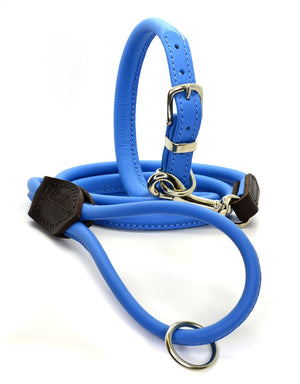 D&H Rolled Leather Dog Collar and Lead Set