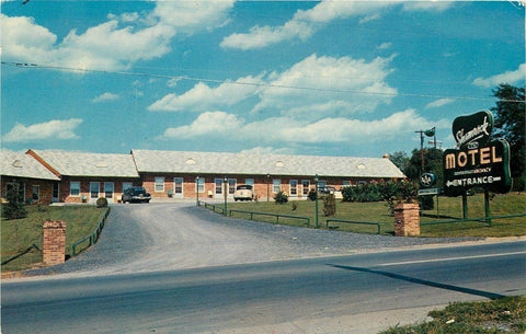 WInchester Virginia~Shamrock Motel~1950s Cars~Postcard | Refried Jeans Postcards