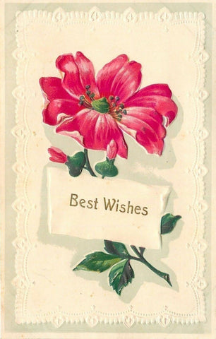 Red Flower~Single Stem: Buds~Full Bloom~White Lacy Embossed Hankie Back~Germany | Refried Jeans Postcards