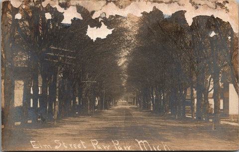 Paw Paw Michigan~Elm Street~Homes Back in Trees~c1908 Real Photo Postcard~RPPC | Refried Jeans Postcards