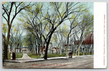 Council Bluffs Iowa~Bayliss Park~Horse Buggy~Advertising Trash Can~1908 Postcard