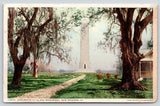 New Orleans Louisiana~Chalmette Oaks & Monument~Spanish Moss~1910 Detroit Pub Co