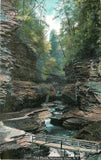 Watkins Glen New York~The Pools~Bridge~Water Falls~c1910 Postcard