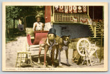 Rural Quebec Canada~Dressed Dog Cart~Top Hats & Sunglasses~Driver~1952 Postcard