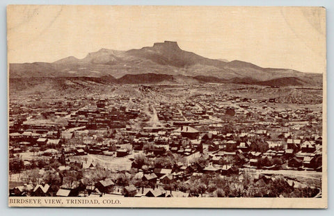 Trinidad Colorado~Bird's Eye Panorama~Neighborhood Homes~c1910 Sepia Postcard