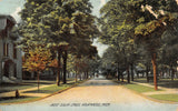 Kalamazoo MI~Autumn Comes Early @ italianate Home on W South St~Red Tree 1908 PC