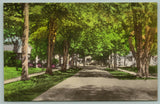 Doylestown Pennsylvania~Maple Avenue Homes~Shady Lane~1930s Handcolored Postcard