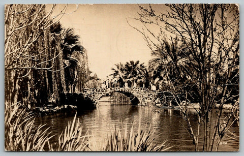 Phoenix AZ~Encanto Park Bridge~Letter from Sis~1st Since Ivan Died~1949 RPPC