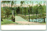 Manchester New Hampshire~Pine Island Park Bridge~Tall Trees Across~c1910