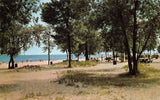 Sheyboygan Wisconsin~Terry Andrae State Park~Picnic Area Behind Beach~1960 PC