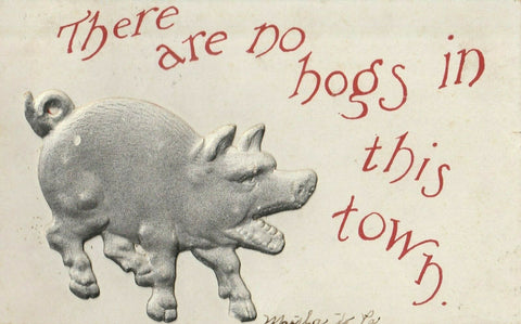 Comic~There Are No Hogs in this Town~Big Embossed Gray Pig~1909 Postcard