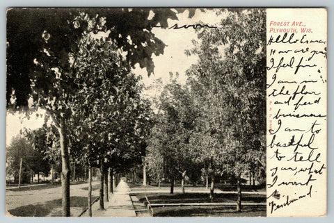 Plymouth Wisconsin~Forest Avenue~Sidewalk Past Homes~1905 B&W Postcard