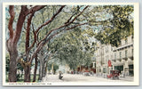 St Augustine Florida~King Street Horse Trough~Drug Store~Vintage Cars~c1916