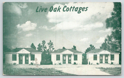Wilmington North Carolina~Live Oak Cottages~3 Cottages in a Row~1950s Roadside