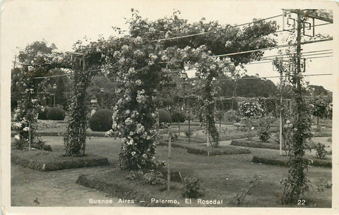 Palermo Buenos Aires Argentina~RPPC of Rose Gardens~El Rosedal Closeup~c1920 pc | Refried Jeans Postcards