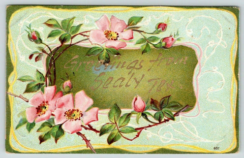 Sealy Texas~Wild Rose Flower Greetings~Gold Leaf Embossed~c1910 Postcard