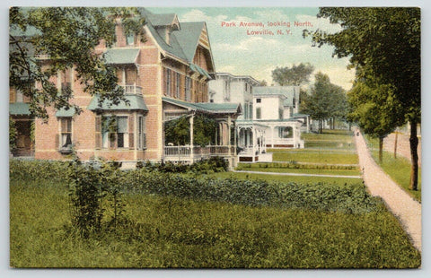 Lowville New York~W Side 7600 Blk of Park Ave~Home w/Vergeboard~Bay Window~c1910