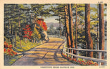 Idaville IN Fence-Lined Winding Road Through Colorful Forest Greetings 1933