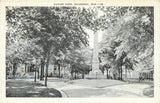 Waukesha Wisconsin~Homes Around Soldiers Monument~Cutler Park~1940 Postcard