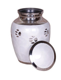 Pet ashes urn, white pet urn , paw print, dog cat ashes container large, Pet ashes urn, urn for pet, Funeral memorial remembrance urn cremation urn for ashes , urn for ashes , container for ashes, ashes storage jar, human ashes container, large urn , british urn, adult ashes urn, cremation urn for human ashes, funeral memorial burial remembrance URN, affordable price urn, metal urn, pet urn, free delivery urn, quick delivery urn