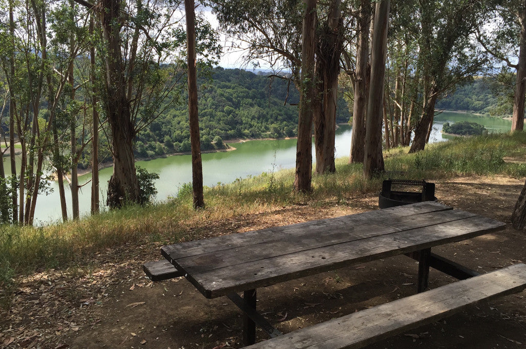 Best Campsites in the Bay Area