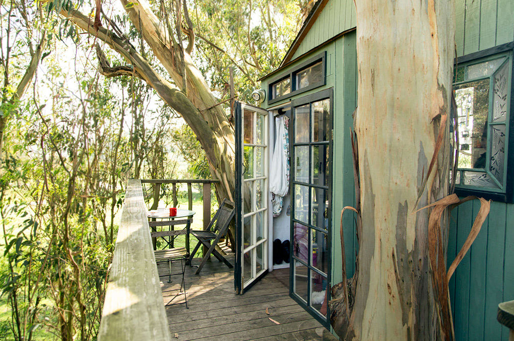 Hipcamp Highlight: Treehouse at Swallowtail Studio