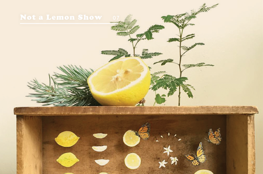 Not a Lemon Art Show
