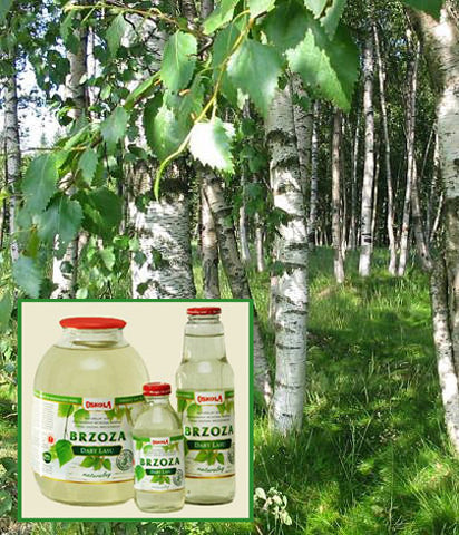 Oskola Birch Juice (Sap) 300 ml, , Foods and Grains, Oskola, Brentwood Health and Wellness