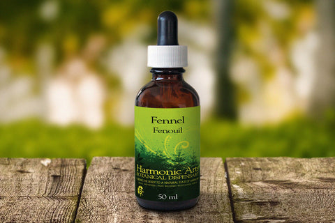 Harmonic Arts Fennel Seed 50 ml, , Foods and Grains, Harmonic Arts, Brentwood Health and Wellness