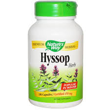 Nature's Way Hyssop 445 mg 100cap, , Vitamins and Supplements, Nature's Way, Brentwood Health and Wellness