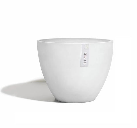 Antwerp pot (Available in 2 sizes and 2 colours)