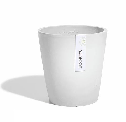Morinda orchid pot (Available in 2 colours)