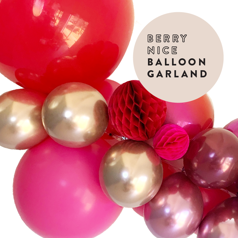Berry Nice Pink, Burgundy Balloon Garland 2m PL2020-Party Love