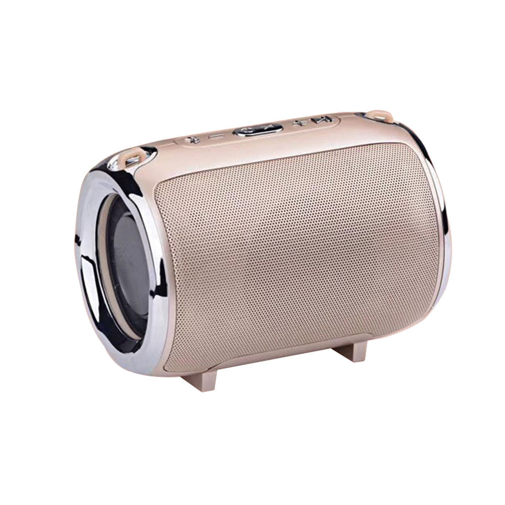 Wireless Bluetooth Metallic Speaker