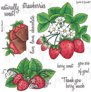 Sweet Strawberries Rubber Stamp Set [00-484P6]