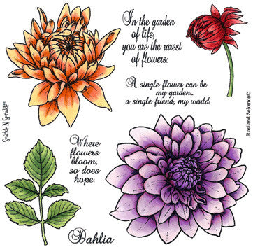 Dahlia Rubber Stamp Set [00-500P6]