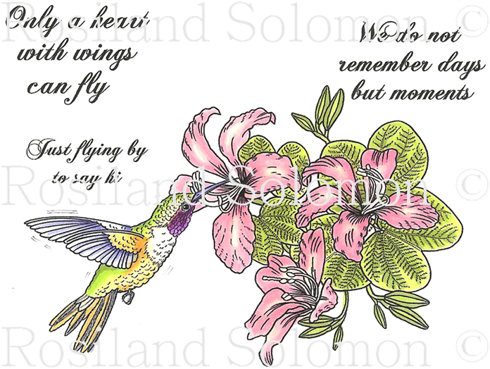 Hummingbird 2 Digital Stamp Set [DIGI541R]