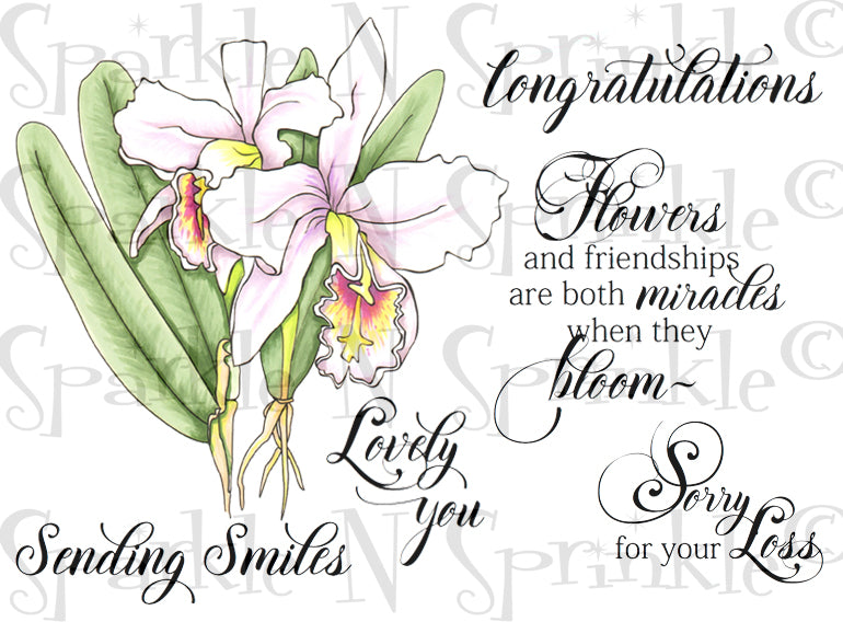 Botanical Orchid Flowers Rubber Stamp Set [00-874P5]