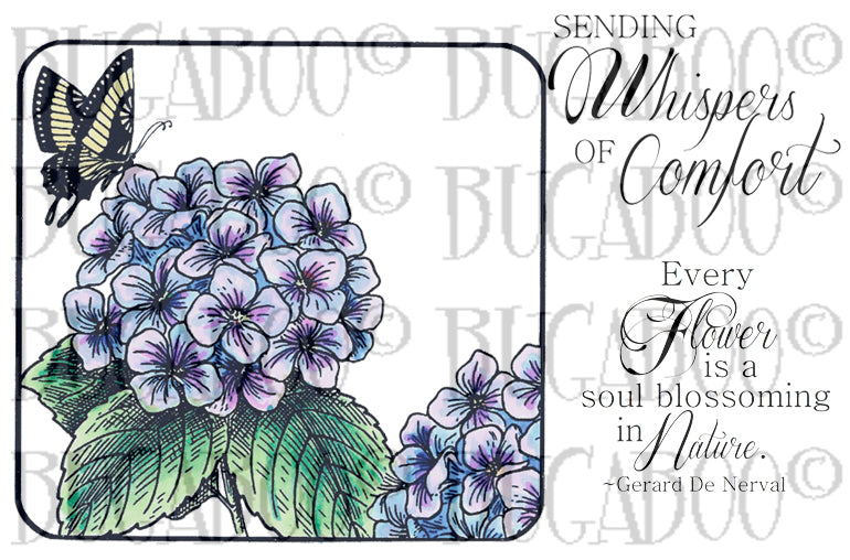 Whispers of Comfort- Hydrangea Rubber Stamp Set [00-883P5]