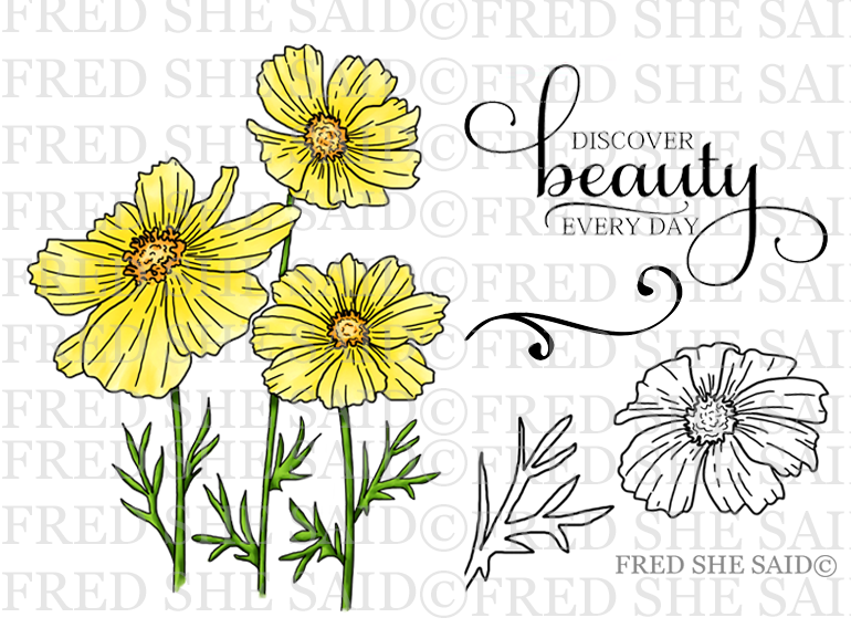 Colorful Cosmos Blooms Rubber Stamp Set [00-899P5]