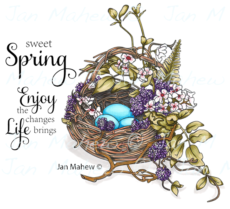 New  Early Spring Nest Rubber Stamp Set, 00-932P5