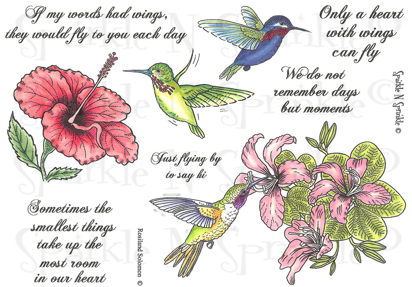 Hummingbirds & Flowers Rubber Stamp Set [00-451P4]