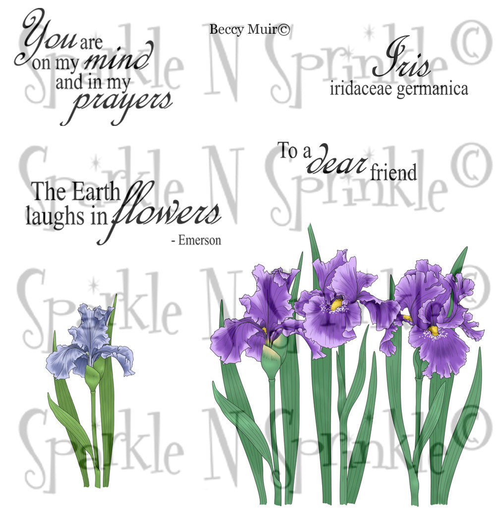 Iris Garden Rubber Stamp Set [00-687P5]