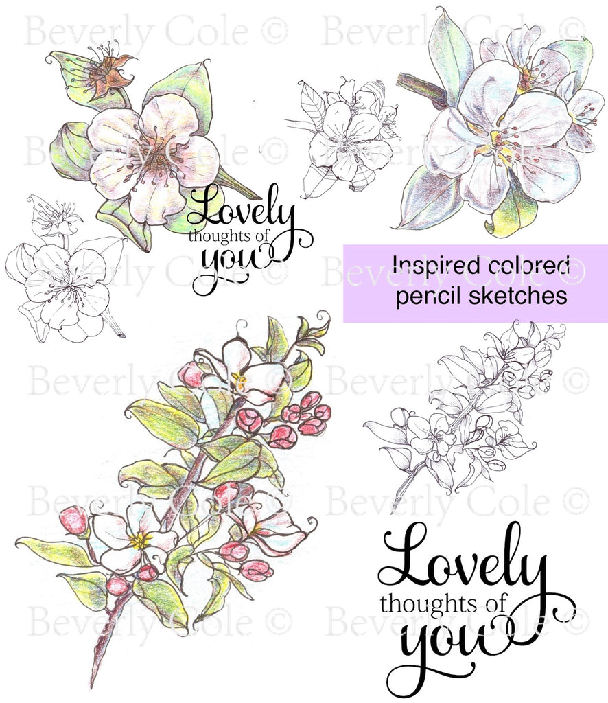 Sketched Pear Blossom Digital Stamp [Digi904BC]
