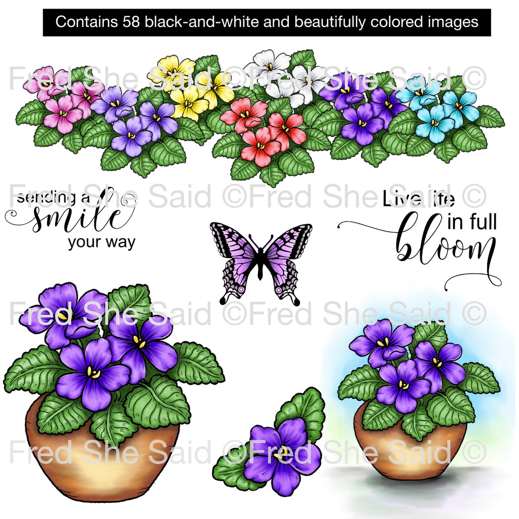 Violets for You Digital Stamp Set, DIGI925FS