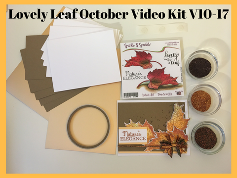Lovely Leaf October Video Kit V10-17