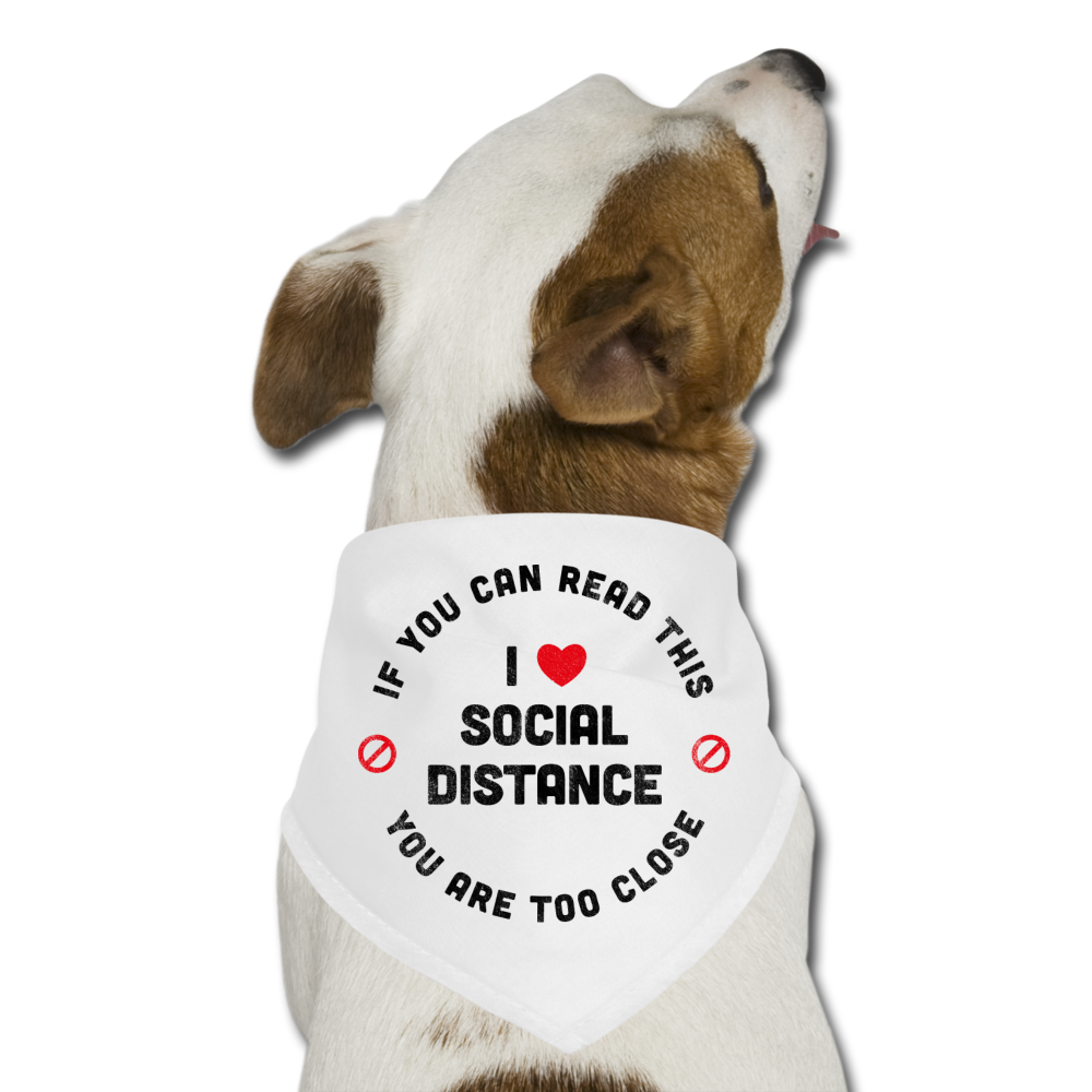 Social Distancing Dog Bandana - white