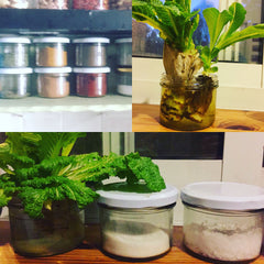 A few ideas for reusing RUSTYS jars