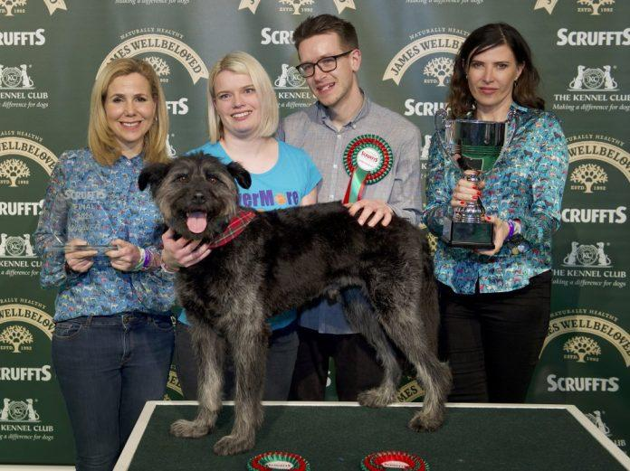 A loveable crossbreed from Newark, Nottinghamshire, was crowned Scruffts Family Crossbreed of the Year last Saturday (7 March) at Crufts before the eyes of his proud owners, Hannah and Stephen Hayes.